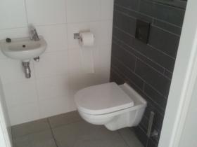 toilettegels